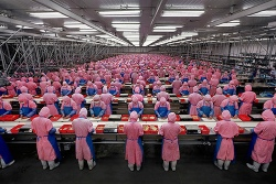 Factory workers in China