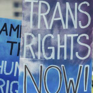 New York City Recognizes 31 GenderDistinctives
