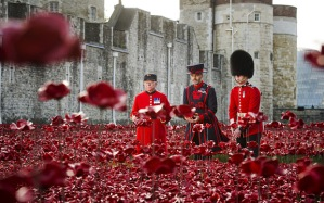 The installation 'Blood Swept Lands and Seas of Red' at the Tower of London, commemorating the centenary of Britain's involvement in the First World War . (Credit: Geoff Pugh/The Telegraph)
