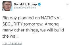 Trump wall tweet
