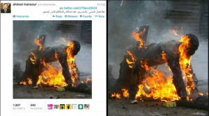aljazeera-channel-forge-news-and-images-about-what-is-going-on-in-egypt-300x167
